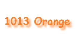 1013 Orange