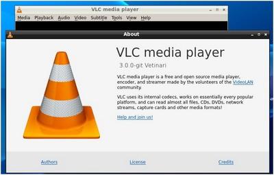 VLC plug01