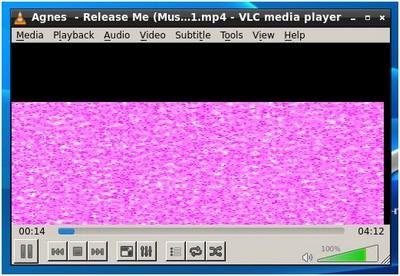 VLC plug02