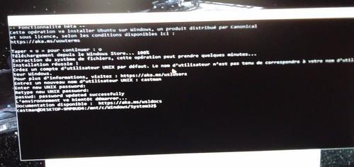 BashUbuntuWin10-04